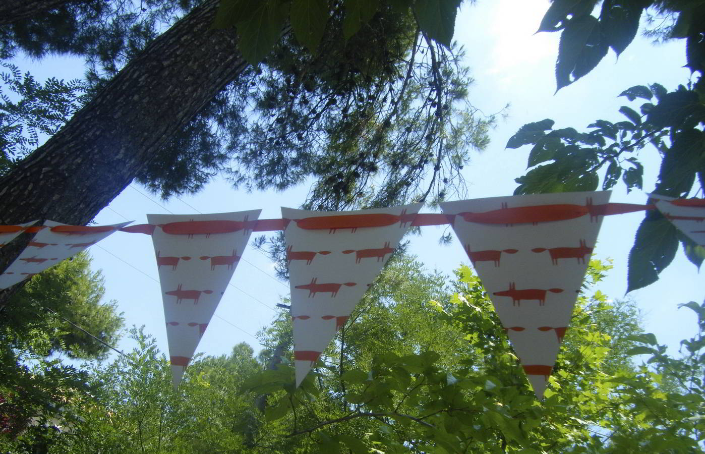 baptism_the-orange-fox_hara-kontaxaki_19